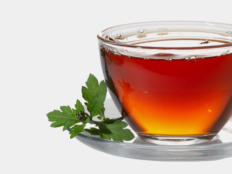 10-Amazing-Health-Benefits-Of-Sassafras-Tea1