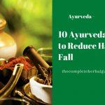 10 Ayurveda Tips to Reduce Hair Fall