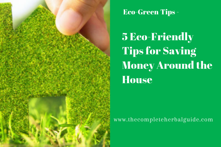 5 Eco-Friendly Tips for Saving Money Around the House