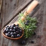 Are-You-Bloated-Try-Magical-Herb-Juniper-Berry_FT-770x402