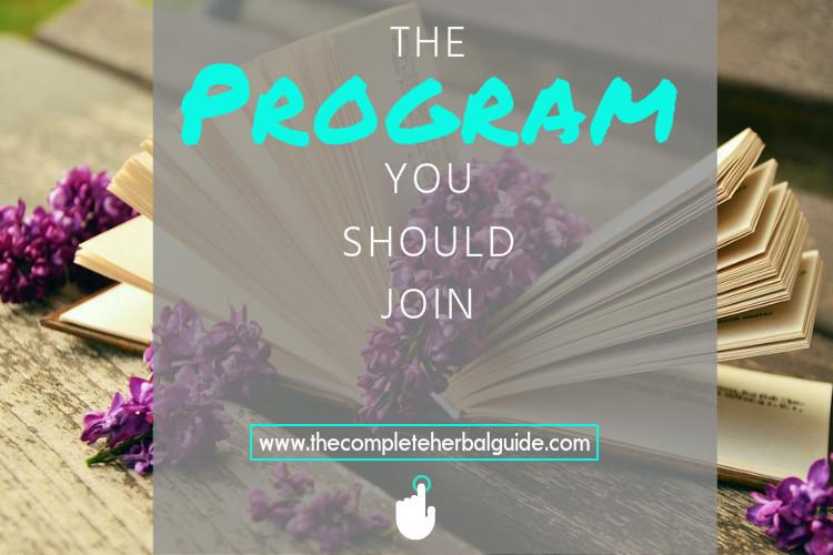 Authors program banner