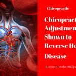 Chiropractic Adjustments Shown to Reverse Heart Disease