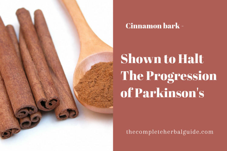 Cinnamon Bark, Used in Chinese Medicine, Shown to Halt The Progression of Parkinson's