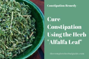 Cure Constipation Using the Herb