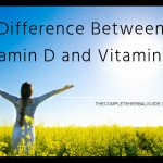 what is the difference between vitamin d and vitamin d3
