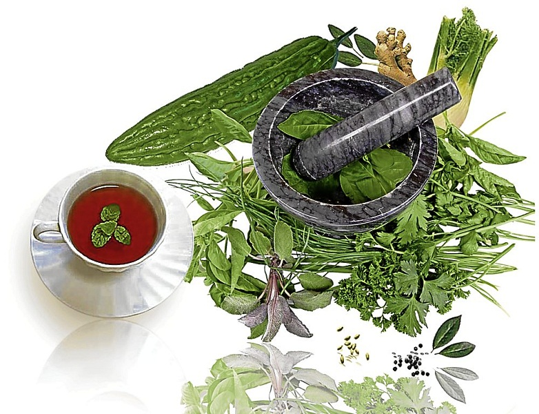 Herbs-use-and-its-effects