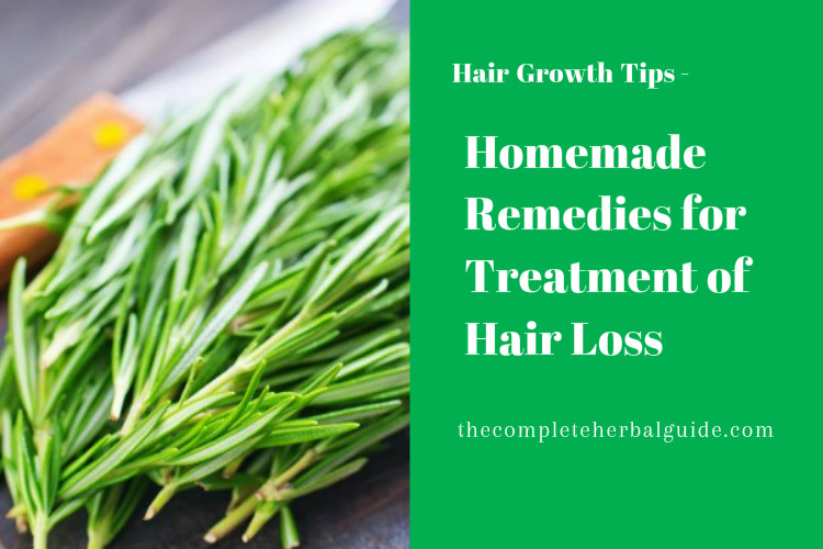 Homemade Remedies for Treatment of Hair Loss