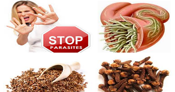 How-to-Cleanse-Your-Body-from-Parasites-and-Normalize-Your-Weight-with-Only-Two-Ingredients
