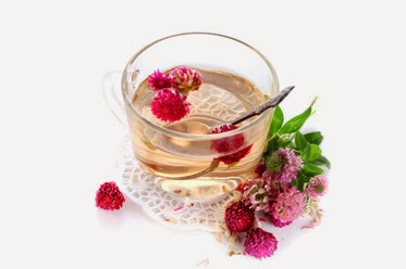 Red Clover Natural Health Clinic