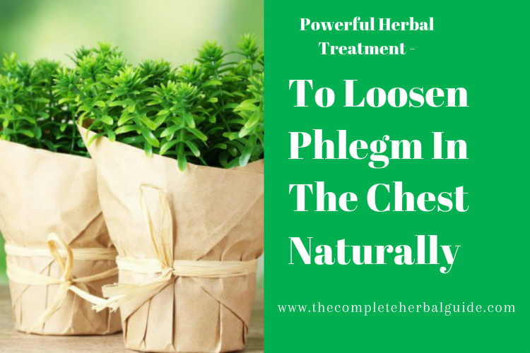 To Loosen Phlegm In The Chest Naturally