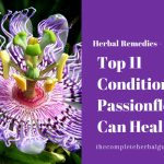 Top 11 Conditions Passionflower Can Heal