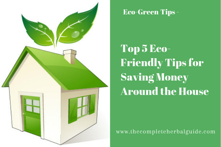 Top 5 Eco-Friendly Tips for Saving Money Around the House