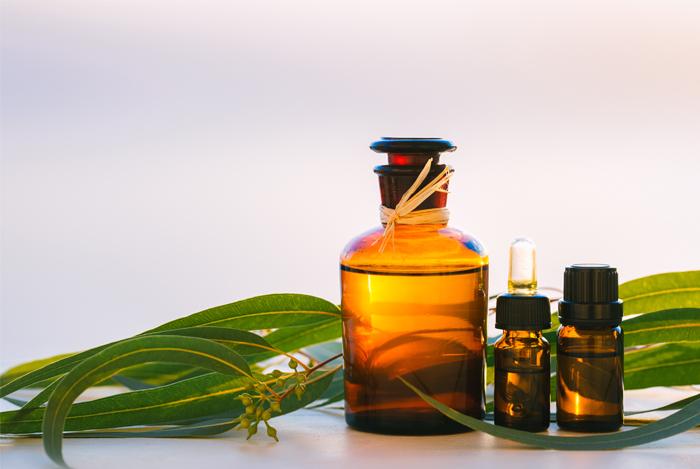 eucalyptus-vials-oil