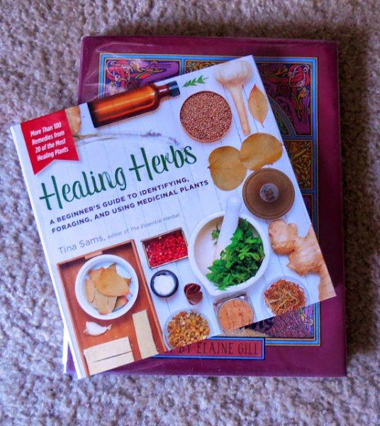 healing herbs book (1)