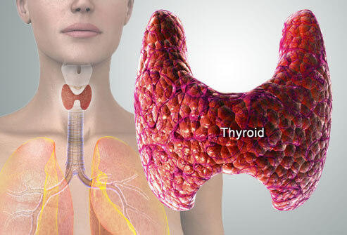 thyroid-symptoms-and-solutions-s2