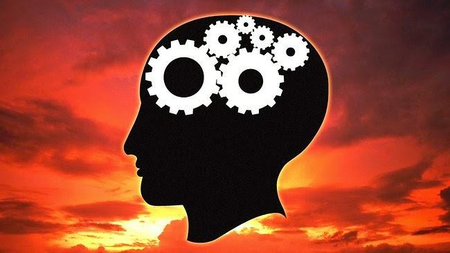 896856-brain-illustration-1