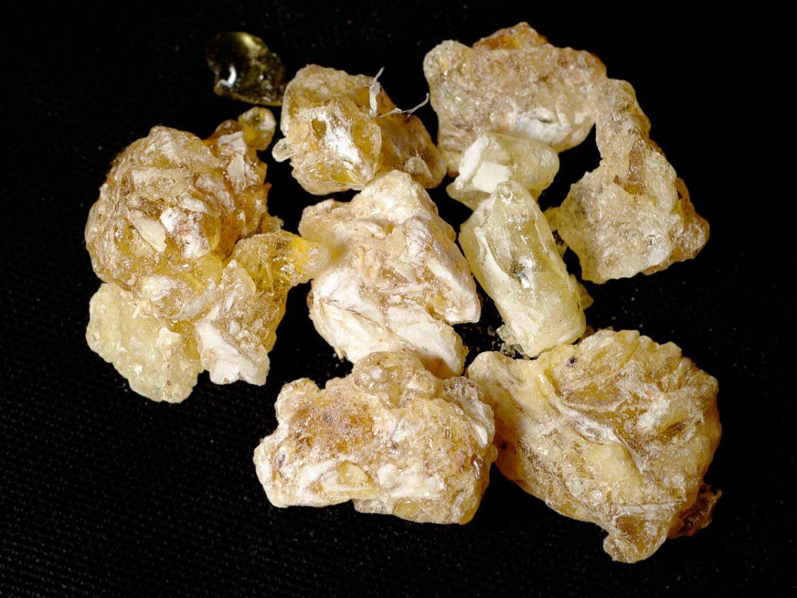 Frankincense_2005-12-31