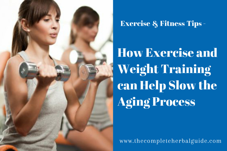 How Exercise and Weight Training can Help Slow the Aging Process