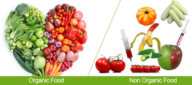 non-organic-foods-2
