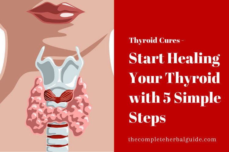 Start Healing Your Thyroid with 5 Simple Steps