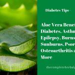 Aloe Vera Benefits: Diabetes, Asthma, Epilepsy, Burns, Sunburns, Psoriasis, Osteoarthritis and More