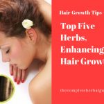 Top Five Herbs, Enhancing the Hair Growth