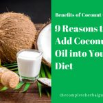 9 Reasons to Add Coconut Oil into Your Diet