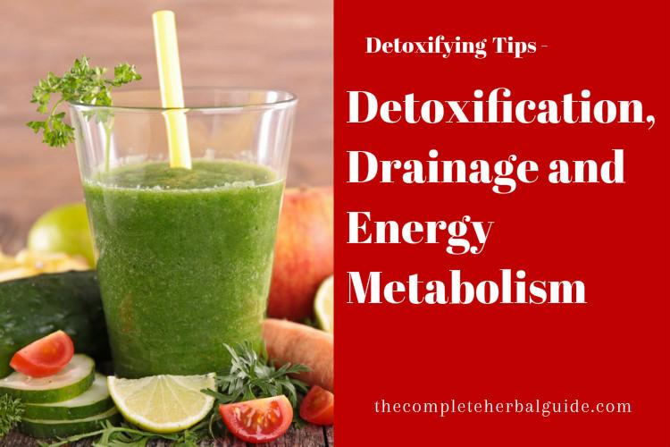 Detoxification, Drainage and Energy Metabolism