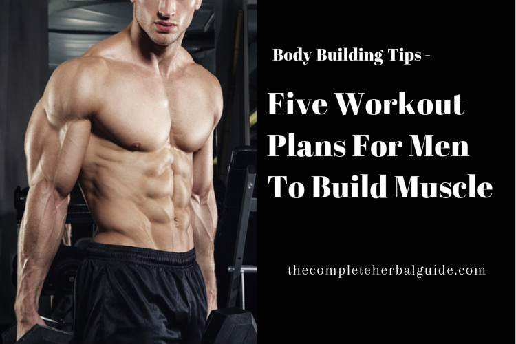 Five Workout Plans For Men To Build Muscle