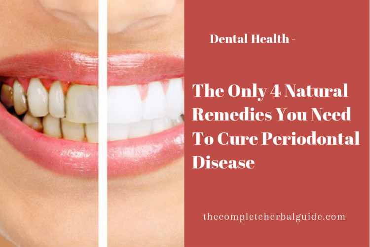 Natural Remedies For Dog Teeth Cleaning