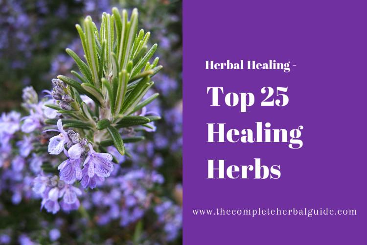 Top 25 Healing Herbs