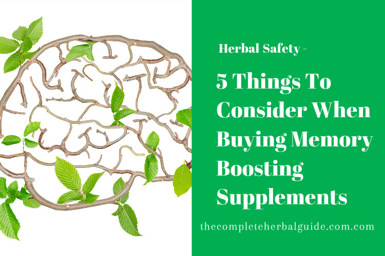 5 Things To Consider When Buying Memory Boosting Supplements