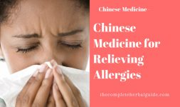 Chinese Medicine for Relieving Allergies
