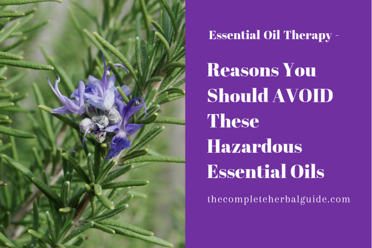 Reasons You Should AVOID These Hazardous Essential Oils