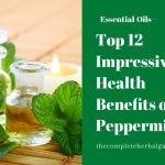 Top 12 Impressive Health Benefits of Peppermint