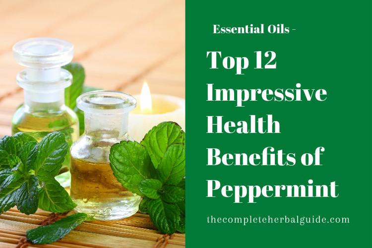 Top 12 Impressive Health Benefits of Peppermint
