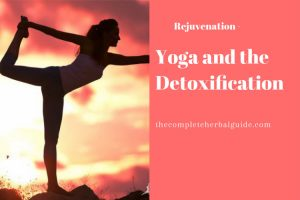 Yoga and the Detoxification