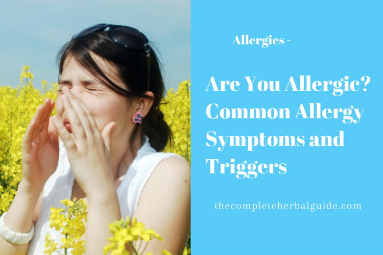 Are You Allergic? Common Allergy Symptoms and Triggers