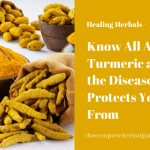 Know All About Turmeric and the Diseases It Protects You From