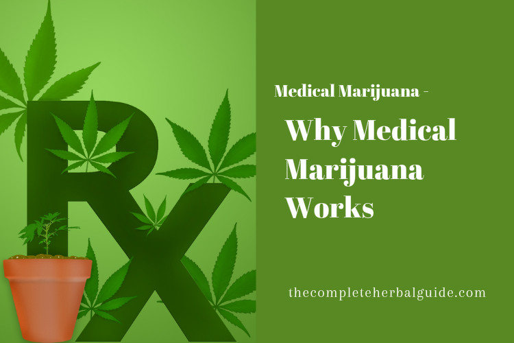Why Medical Marijuana Works