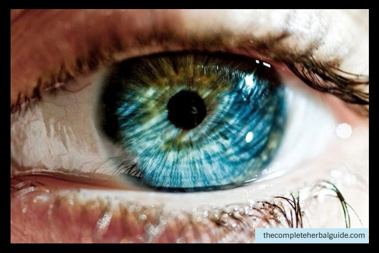 Natural Eye Color Chart Archives The Complete Guide To Natural Healing