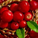 home-remedies-for-bladder-infection