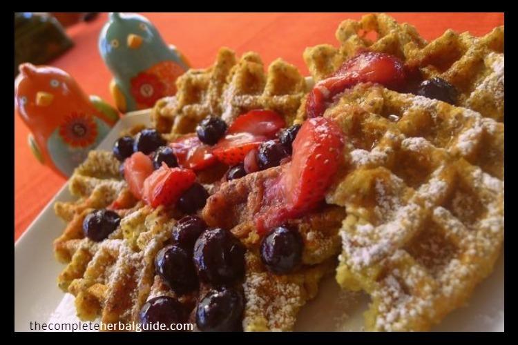 Vegan Pinole-Chia Waffles