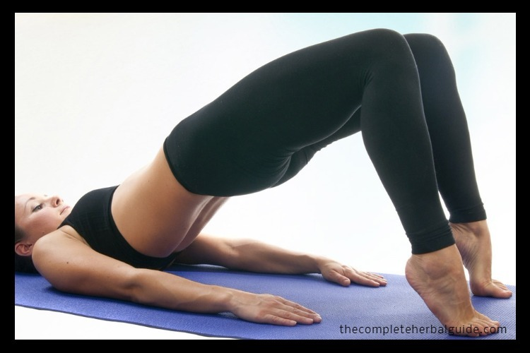 Top-27-Best-Yoga-Asanas-For-Losing-Weight-Quickly-And-Easily1
