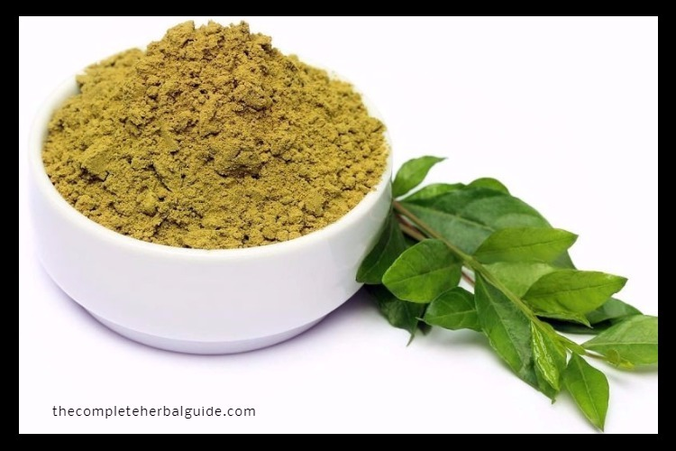 Henna and Amla Paste Mix