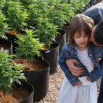 140306105201-05-uses-for-medical-marijuana-restricted-horizontal-large-gallery
