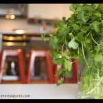 Storing Fresh Herbs: Simple Tricks to Make Your Fresh Herbs Last TWICE as Long