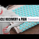 Therapeutic Manual Massage Mat Pillow and Bag