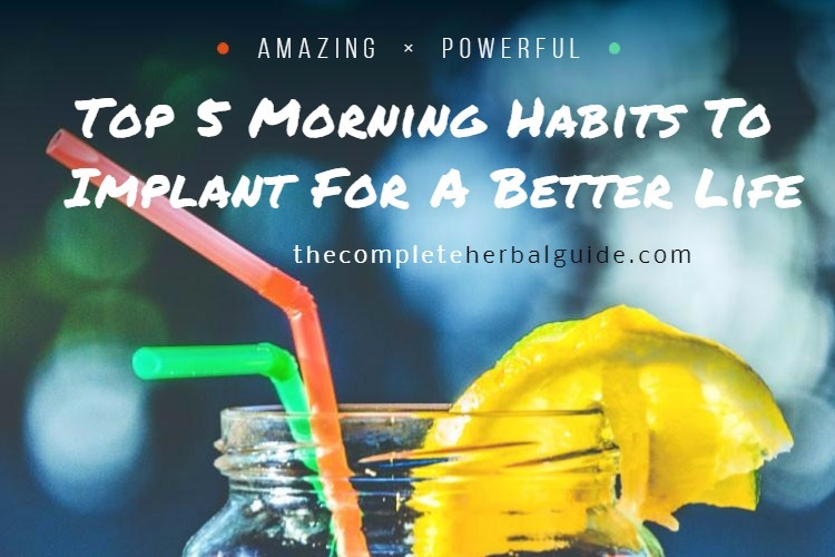 Top 5 Morning Habits To Implant For A Better Life
