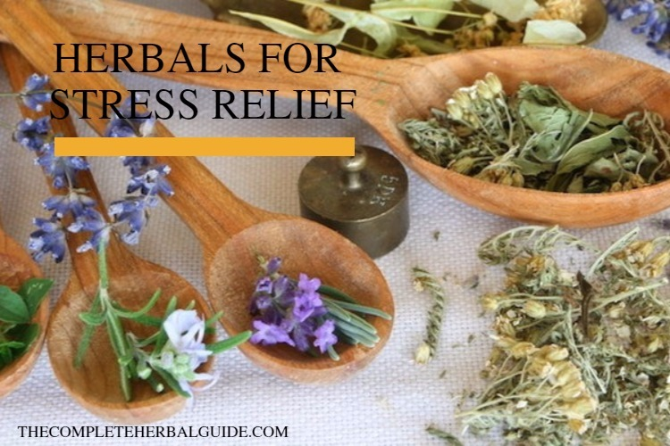 HERBALS FOR STRESS RELIEF